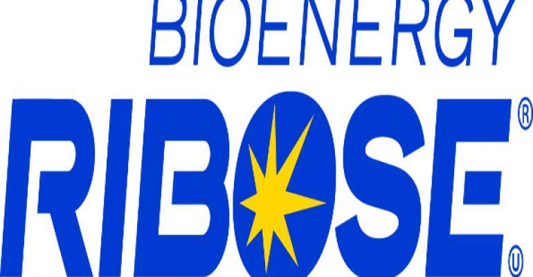 Ribose boosts cellular energy