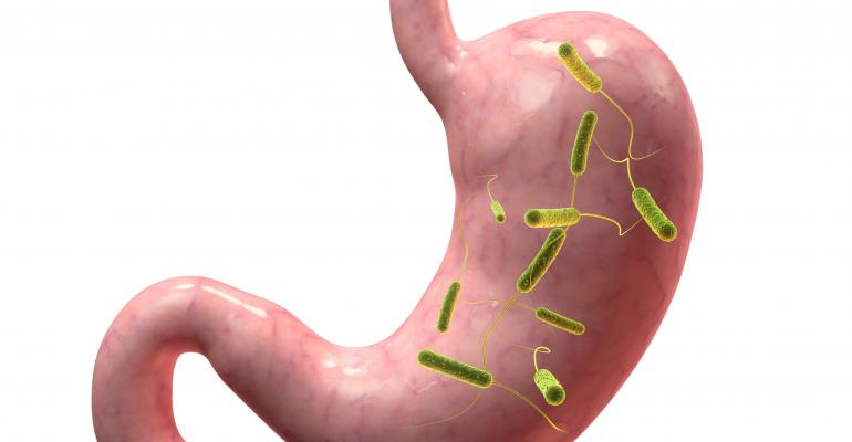 Natural products are targeting gut bacteria in the stomach