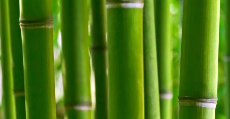 Ulrick & Short debuts bamboo fiber