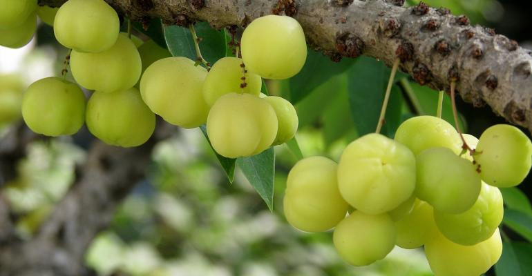 Indian gooseberry helps hearts