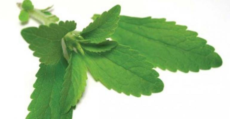 Stevia First discovers novel plant variant