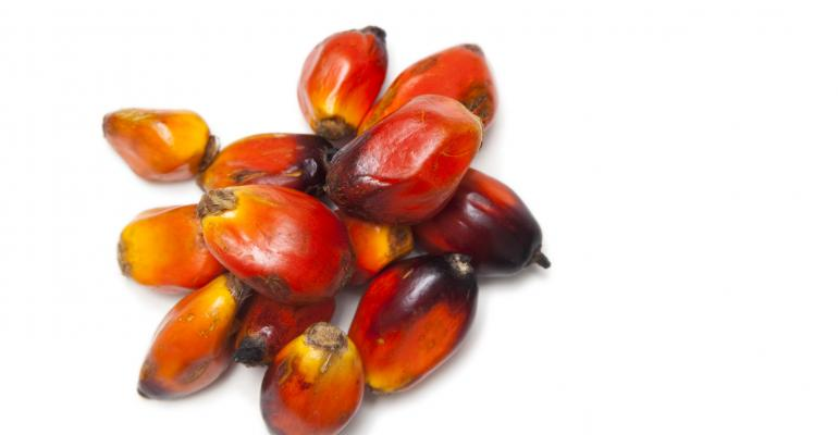 Hopeful signs for sustainable palm oil