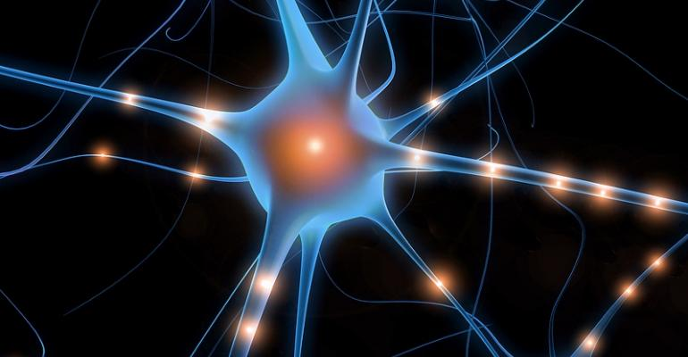 New study backs oral agmatine for neuropathic pain