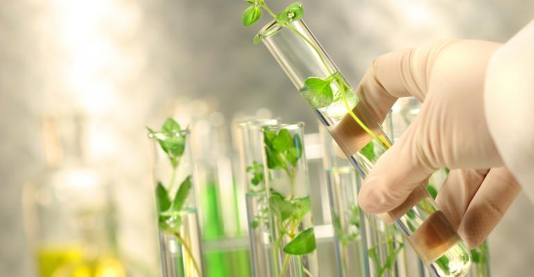 DianaPlantSciences forms scientific advisory board