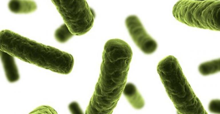 Probiotics may crack risk of osteoporosis