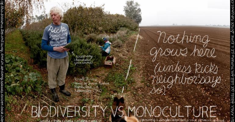 Watchword: Biodiversity