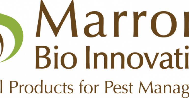 MBI, DSM sign ag R&D agreement