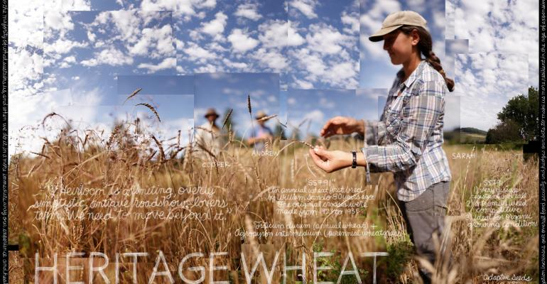 Watchword: Grains