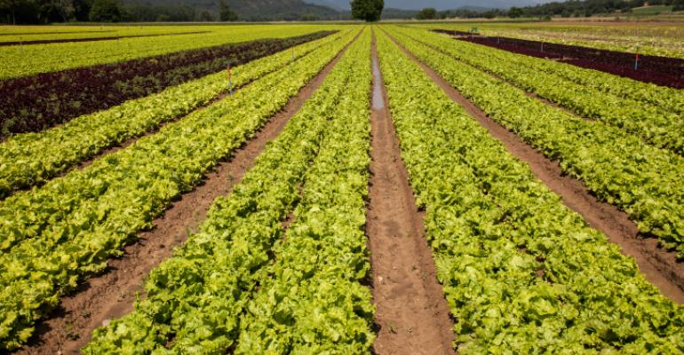Helping farmers meet demand for the growing organic market