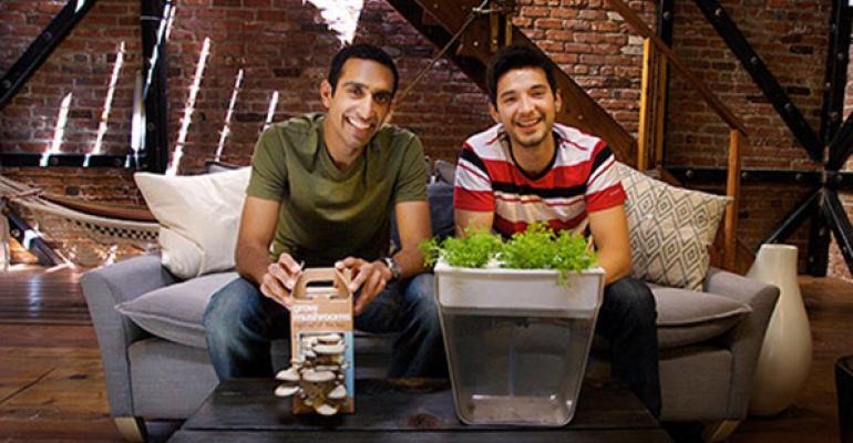 Nikhil Arora  Alejandro Velez founders of Back to the Roots
