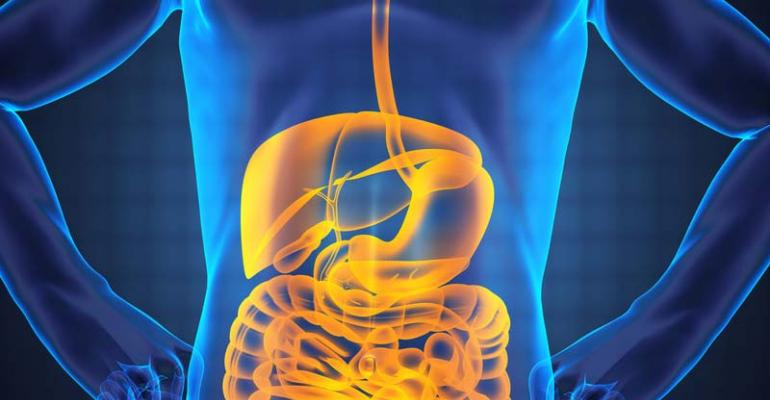 5 supplements for IBS