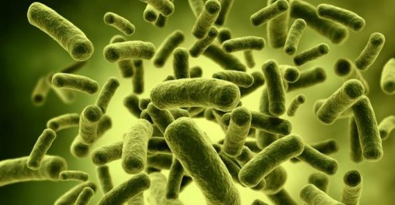 Probiotics may keep you from dwelling on the past