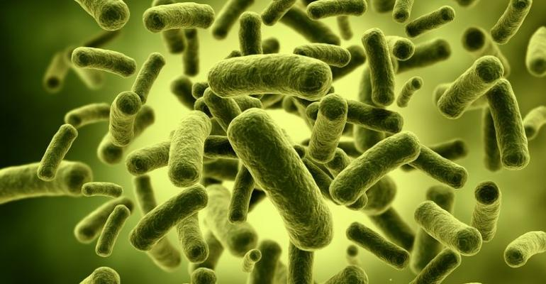 Many probiotics tested contaminated with gluten