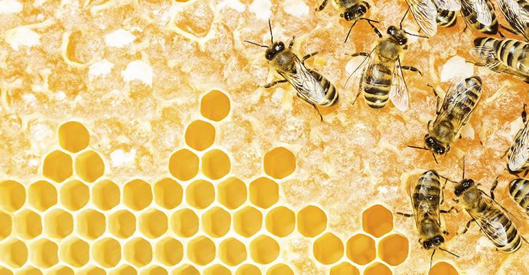 Health benefits from the beehive