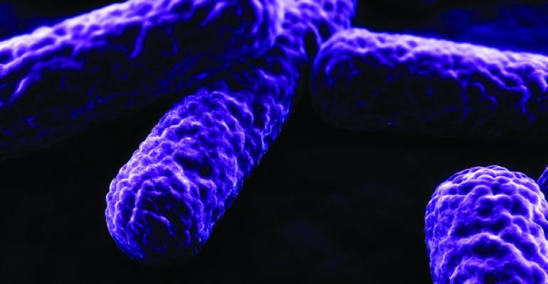 Gutting allergies with probiotics
