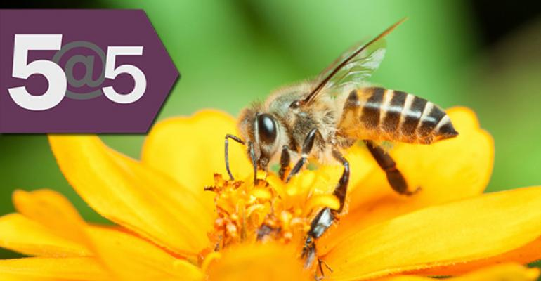 5@5: Clever Honey Nut Cheerios box calls attention to bee problems | What happens when big buys small