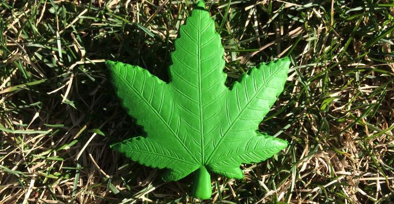 Hemp—no, not pot, not CBD, not cannabis, not quite—hemp for victory