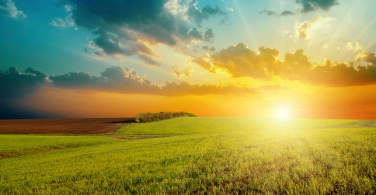 Low sun, and D, may increase leukemia risk