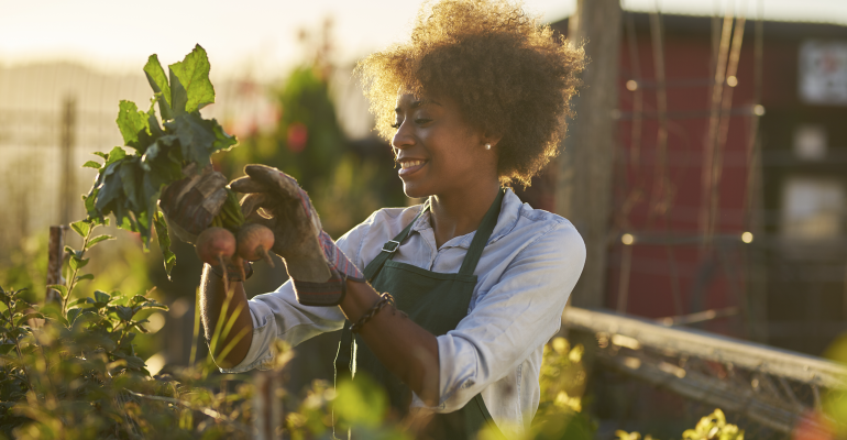 Community farms and free markets provide hundreds of pounds of fresh produce a year