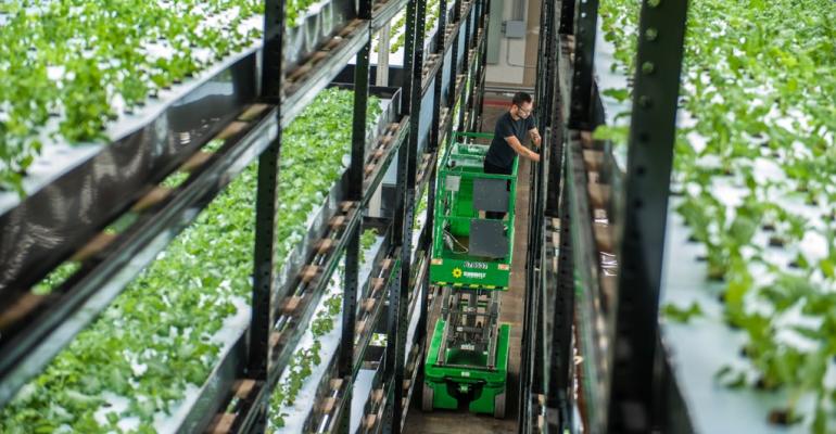 Urban Organic hydroponics