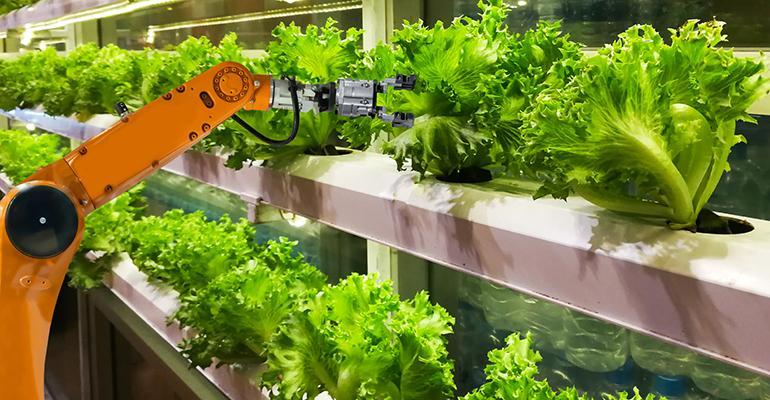 vertical-farming-promo.jpg