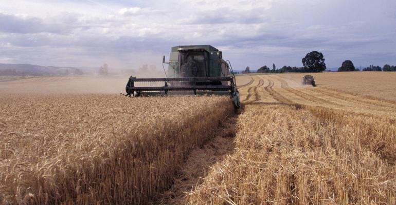 wheat-harvest-promo
