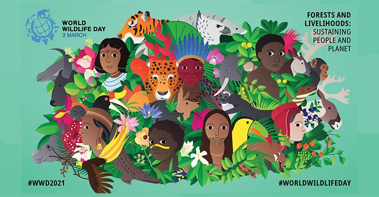 World Wildlife Day celebrates forests and the people they support