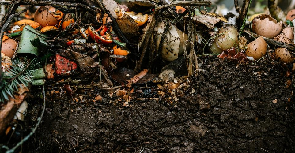 The case for composting [infographic]