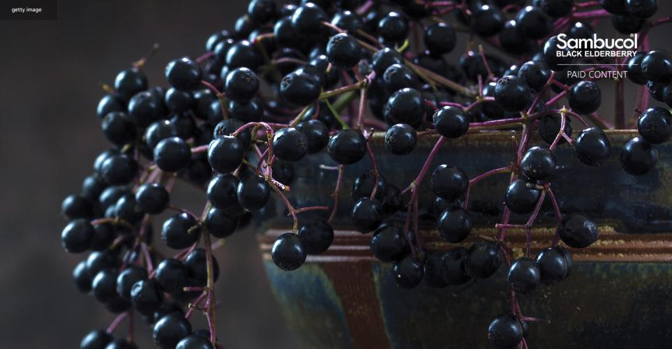 The double-acting immune power of black elderberry – download