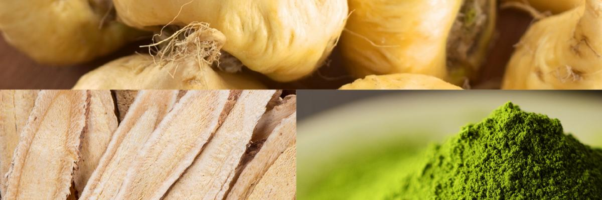 Esca Bona ingredient trend series: Adaptogens
