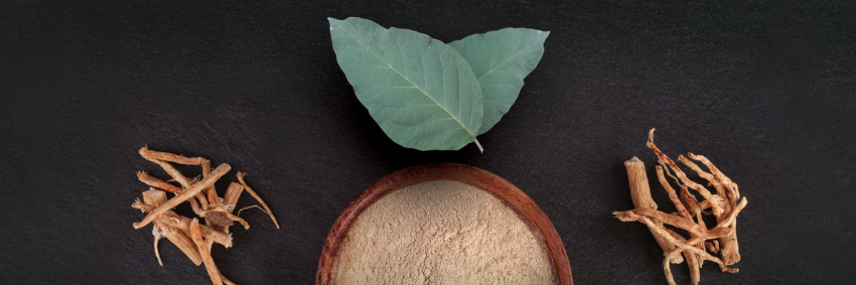 Sensoril Ashwagandha: harnessing the power of leaf and root - white paper