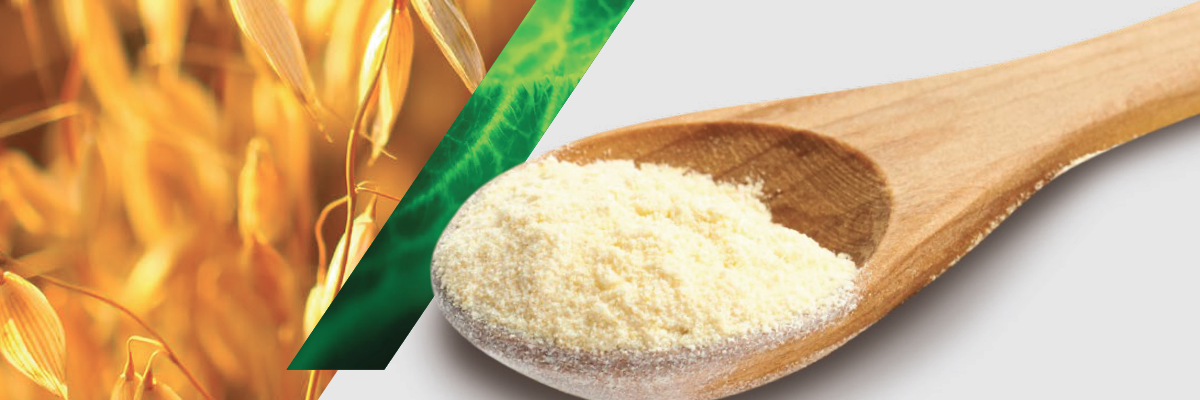 Oat bran beta-glucan: The new go-to nutrition ingredient - white paper