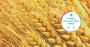 Spark Change Trends regenerative agriculture