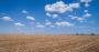 barren soil