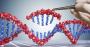 dna gene editing