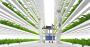 Futuristic vertical farm