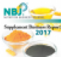 NbJ Supplement Business Report 2017 cover