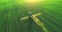 pesticides field