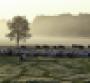 Savory Institute Land to Market