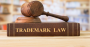 Trademark law book and gavel