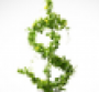 Grow your brand with Slow Money and the Soil Trust