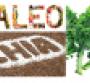 Paleo, chia and kale move (predictably) mainstream