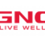 At GNC, net income increases as sales decline slows in third quarter 2019