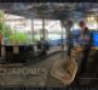 Watchword: Aquaculture/Mariculture