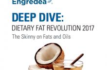 Fats-DeepDive-17-cover