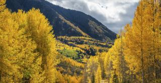 Autumn's change is so pertinent to the natural retail industry right now Christine Kapperman