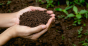 EE18-soil-health-regenerative-ag-getty.png