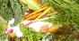 consumers seek fresh foods beyond the produce aisle