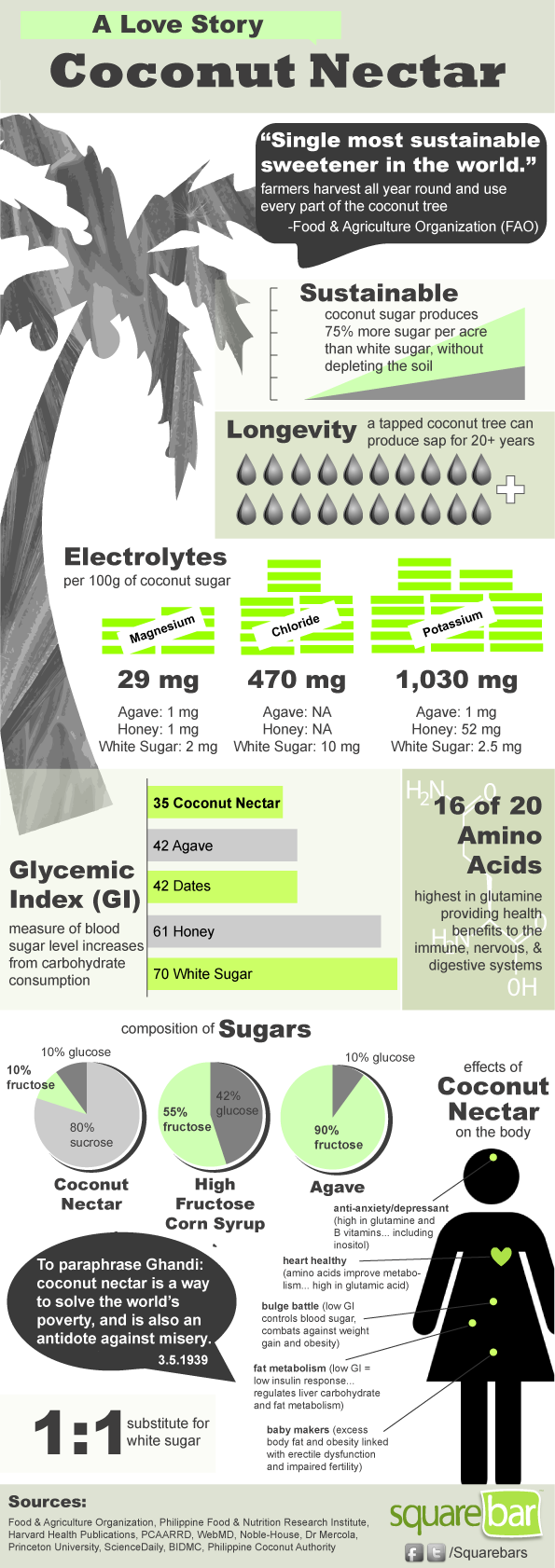 Coconut nectar infographic
