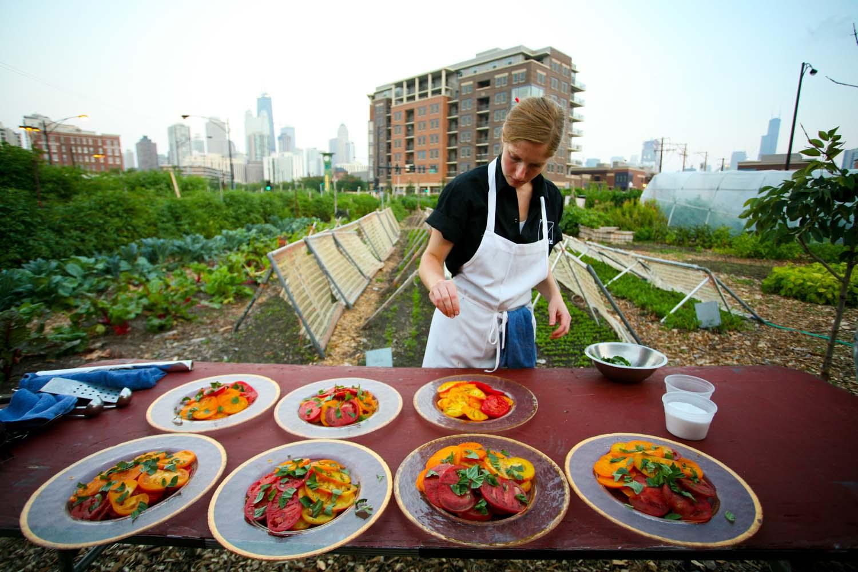 Does Food Network Waste Food
